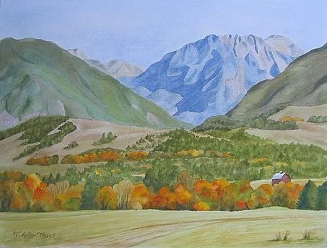 Black Mountain by Teresa Kelly-Tagas