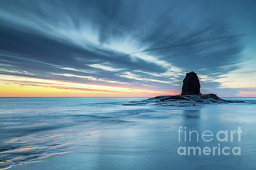 Black Nab, Saltwick Bay by Martin Williams