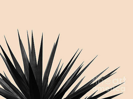 Black Palms on Pale Pink by Emanuela Carratoni