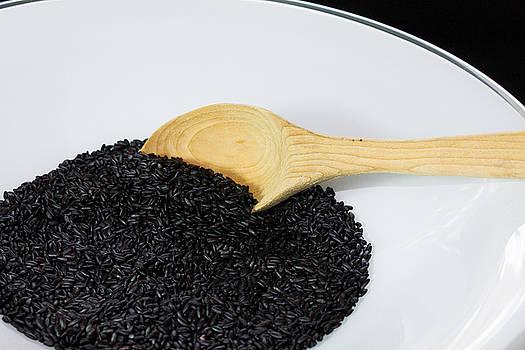 Black Rice by Michael Tesar