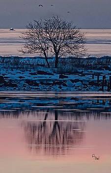 Black Rock Harbor reflection by Alan Thal