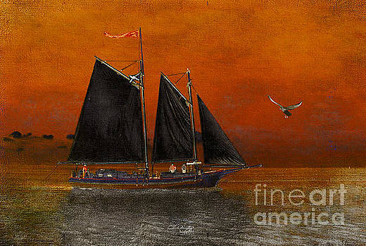 Black Sails in the Sunset by Chris Armytage