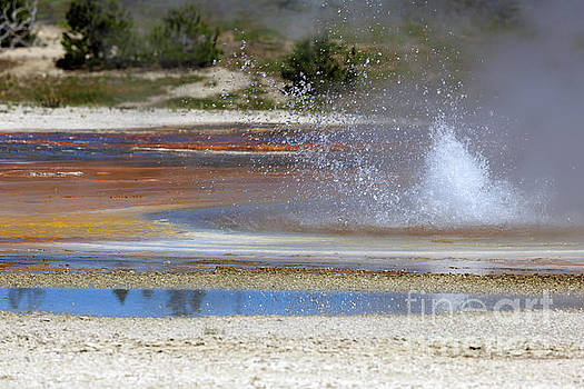 Black Sand Basin Geysers Yellowstone National Park by Louise Heusinkveld