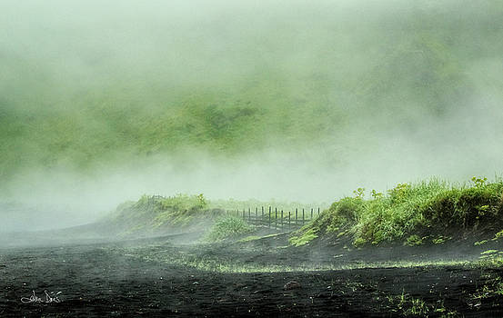 Black Sand Beach in the Mist by Joan Davis