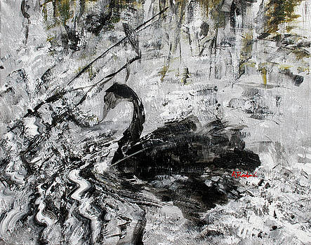 Black Swan 201833 by Alyse Radenovic