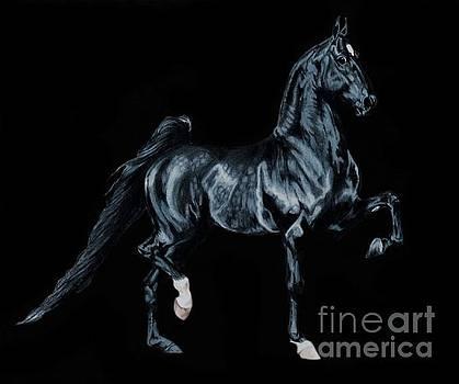 Black Tie Affair featuring Saddlebred Champion Undulata's Made in Heaven by Cheryl Poland