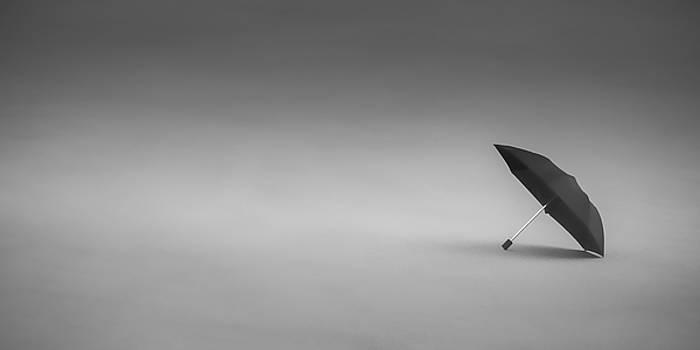 Black Umbrella by Don Schwartz