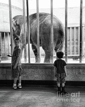 Chuck Kuhn - Black White Boys Elephant