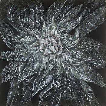 Cannabis indica, Black widow  by Alyssa Serpentini