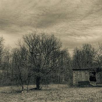#blackandwhite #bw #amishcounty #ohio by Pete Michaud