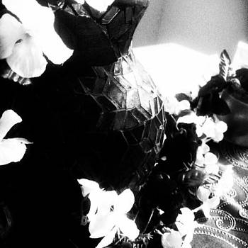 #blackandwhite #flowers #intruiging by Ema Carey