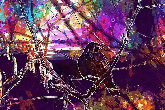 Blackbird Bird Branch Black Nature  by PixBreak Art
