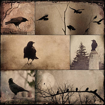Blackbirds Collage Art In Vintage Colors by Gothicrow Images