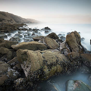 Black's Beach Large Rock by William Dunigan