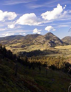 Marty Koch - Blacktail Road Landscape
