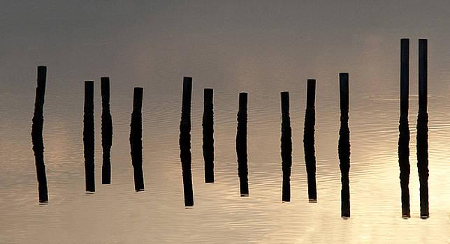 Lauren Brice - Blackwater Abstract