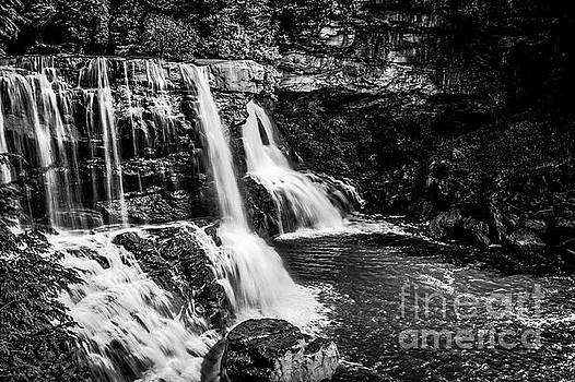 Blackwater Falls 1664 by Doug Berry