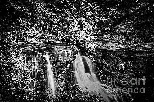 Blackwater Falls 1704T_BW by Doug Berry