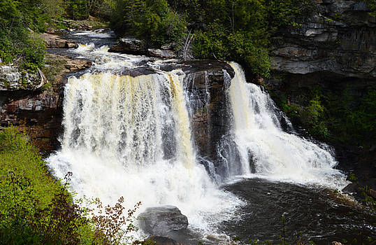 Blackwater Falls - Blackwater State Park by rd Erickson