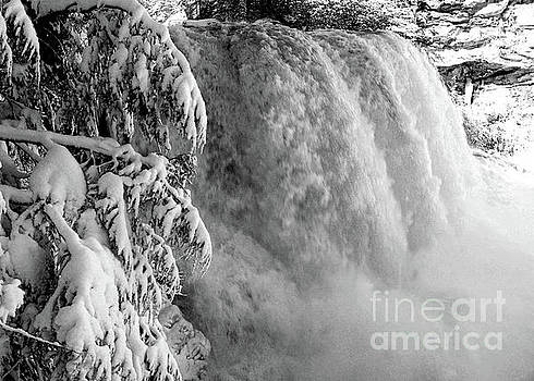Blackwater Falls in the Snow 7776A_BW  by Doug Berry