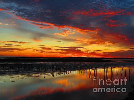 Blackwater red sunset one by Rrrose Pix