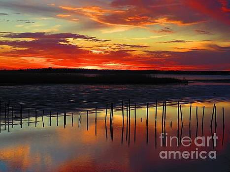 Blackwater Red sunset to by Rrrose Pix