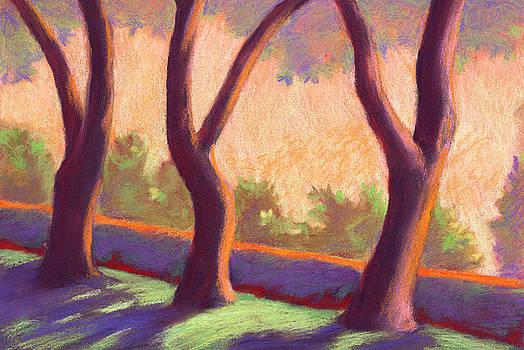 Blake Garden Trees by Linda Ruiz-Lozito