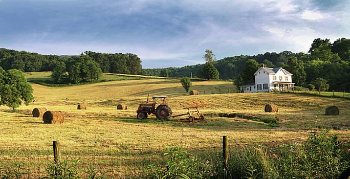 Bland County Farm A by Earl Carter
