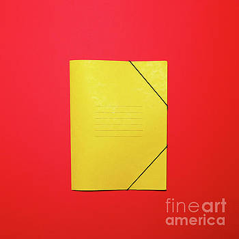 Blank yellow folder on red background - Flat lay minimal concept by Aleksandar Mijatovic