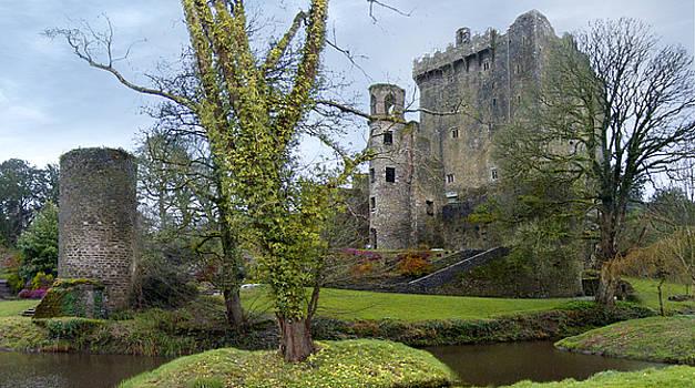 Mike McGlothlen - Blarney Castle 3