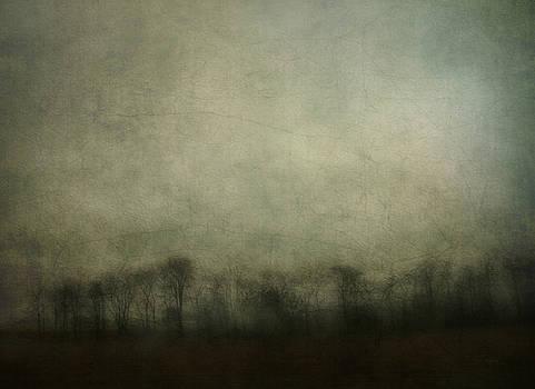 Bleak 2 by Cynthia Lassiter
