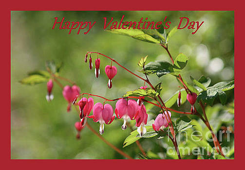 Sandra Huston - Bleeding Hearts Valentine