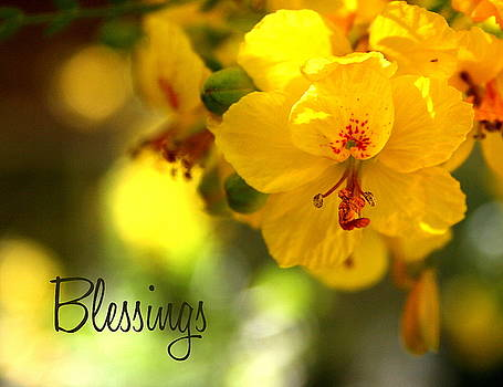 Blessings by Marna Edwards Flavell