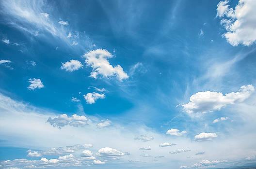 Blissful Blue by Nicole Radlow