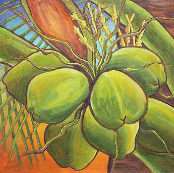 Blissful Coconuts by Tara D Kemp
