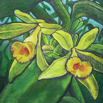 Blissful Vanilla Orchids by Tara D Kemp