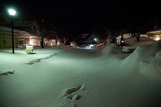 Blizzard 2010 by Jerry Frishman