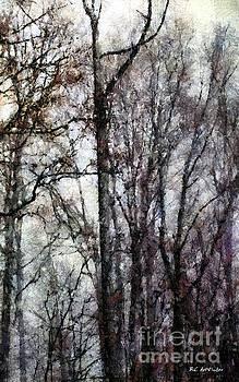 Blizzard Dawning by RC deWinter