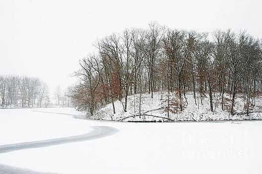 Blizzard Day by Randy Pollard