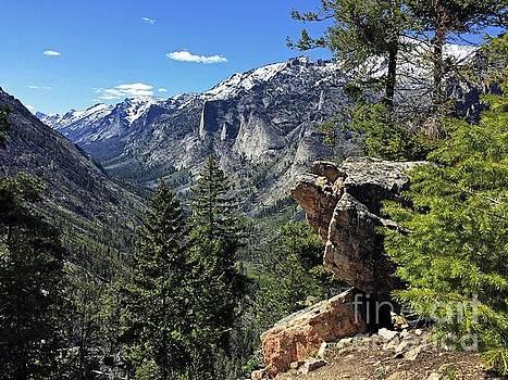 Blodgett Canyon Mt. by Joseph J Stevens