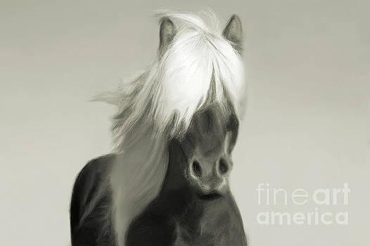 Blondie in Sepia by Sharon Kingston