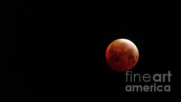 Blood Moon by Chandra Nyleen