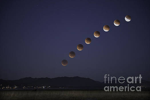 Moore Northwest Images - Blood Moon Eclipse Over the Bay