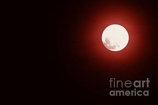 Bob Sample - Blood Moon On Good Friday