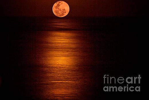 Bob Hislop - Blood Moon Rising
