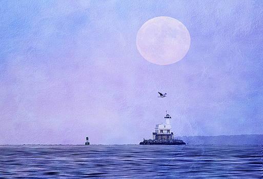 Blood Moon Rising by Linda C Johnson