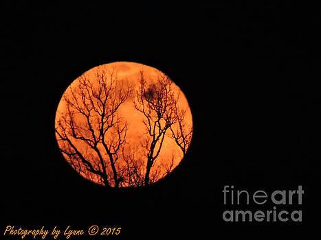 Gena Weiser - Blood Red Moon