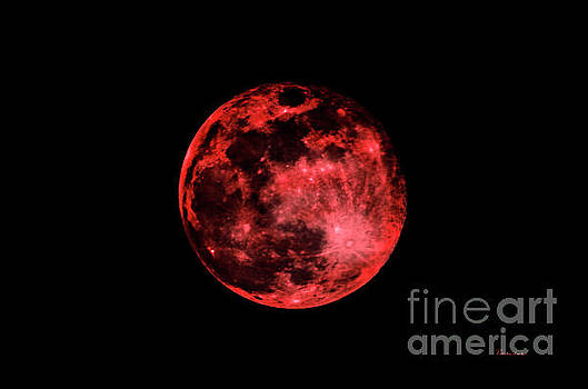 Ricardos Creations - Blood Red Moonscape 3644B