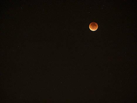 Steven Ralser - Bloodmoon - Sept 27 - Madison - Wisconsin
