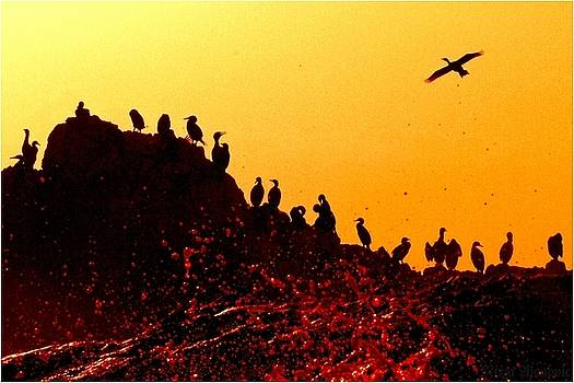 Bloody Sunset at Planet Kormoran by Mirza Ajanovic